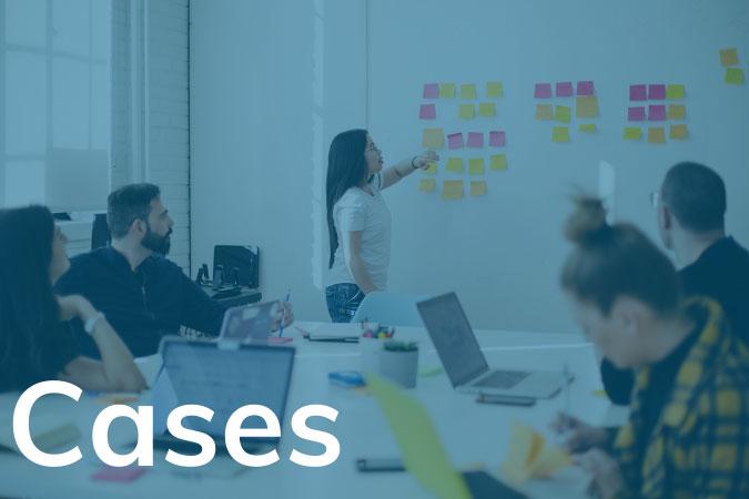 Cases-KAM-Consultants