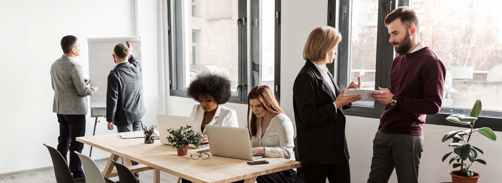 Volledig-beheer-managementsysteem-KAM-Consultants